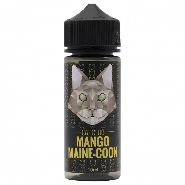 Cat Club - Mango Main-Coon